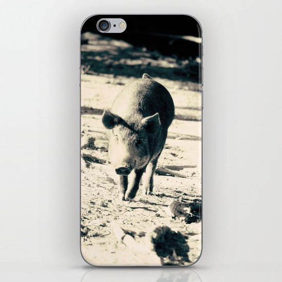 Some Pig iPhone & iPod Skin