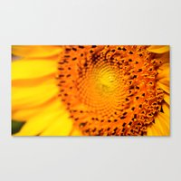 In your face yellow Canvas Print
