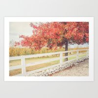 Autumn at the Orchard Art Print