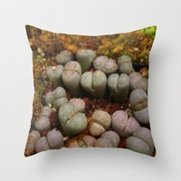 Cactus Stones Throw Pillow