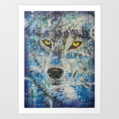 Eyes of The Lone Wolf Art Print