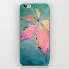 Come iPhone & iPod Skin