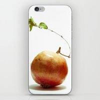 Pomegrantes iPhone & iPod Skin