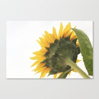 Greener On The Other Sid… Canvas Print