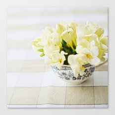 Spring in a cup Canvas Print
