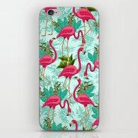Pink Flamingos Exotic Birds iPhone & iPod Skin