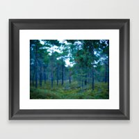 Another Forest Framed Art Print