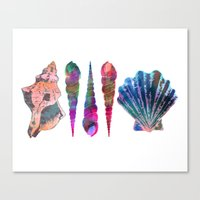 SEASHELL LOVE IV Canvas Print
