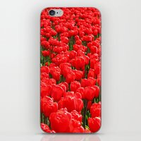 iPhone & iPod Skin featuring Red tulips by AstridJN