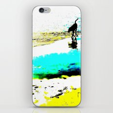 Beachcomber iPhone & iPod Skin