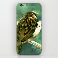 Sparrow In Puriri Tree iPhone & iPod Skin