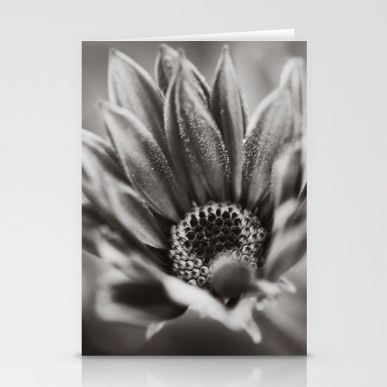 Flower in Black and White Stationery Card