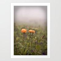 mountain flowers in a fog Art Print