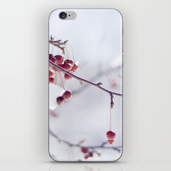Cherries In Winter iPhone & iPod Skin