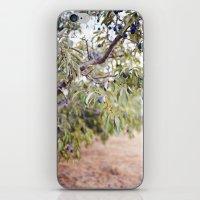 PLUM FARM iPhone & iPod Skin