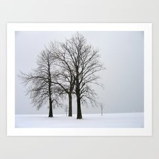Three Trees in Winter Art Print