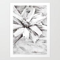 Flower drawing Art Print