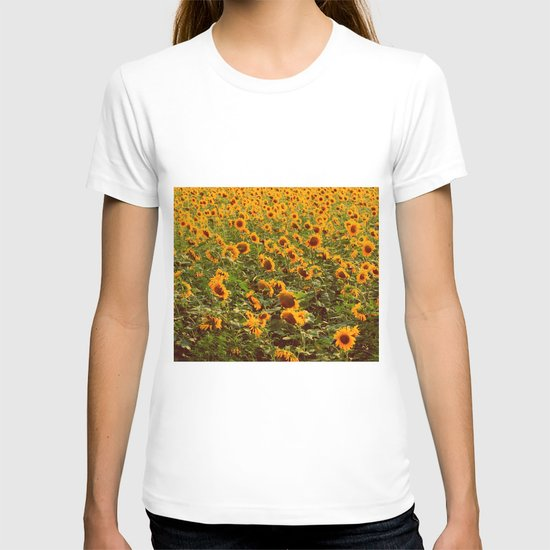 Fields of gold T-shirt