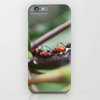 iPhone & iPod Case featuring Bug Life by Kassidy Daussin