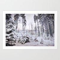 snow covered landscape Art Print