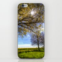 The Summer Farm Track iPhone & iPod Skin
