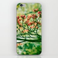 In the Limelight iPhone & iPod Skin
