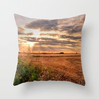 A Perfect End Throw Pillow