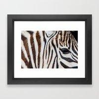 EYE OF THE ZEBRA Framed Art Print