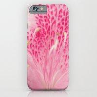 Pink Azalea iPhone 6 Slim Case