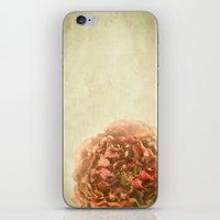 Breathe Deep iPhone & iPod Skin