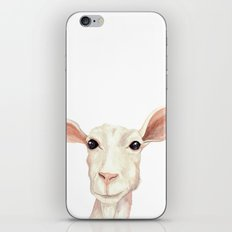 Watercolor Billy Goat iPhone & iPod Skin
