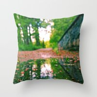 Pathway puddle Throw Pillow