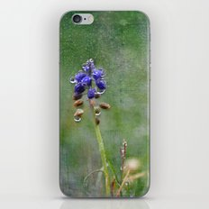 Solitary iPhone & iPod Skin