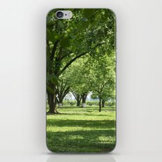 Peach and Pecan Orchard iPhone & iPod Skin