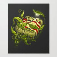 Bed Bugs Canvas Print