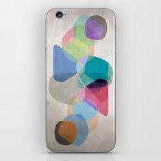Graphic 100 iPhone & iPod Skin
