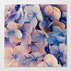 Blue Dreams Canvas Print