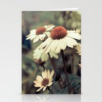 Soft White Cone Flower  Stationery Cards