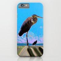 Big Bird, Little Bird iPhone 6 Slim Case