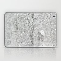 First snow Laptop & iPad Skin