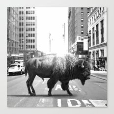 STREET WALKER Canvas Print