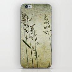 Water's Edge iPhone & iPod Skin