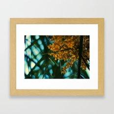 The Amazon. Framed Art Print