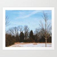 Winter Flock-Winter Walk Art Print