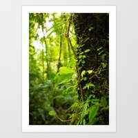 Trunk of the Jungle Art Print