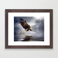 Bald Eagle swooping Framed Art Print