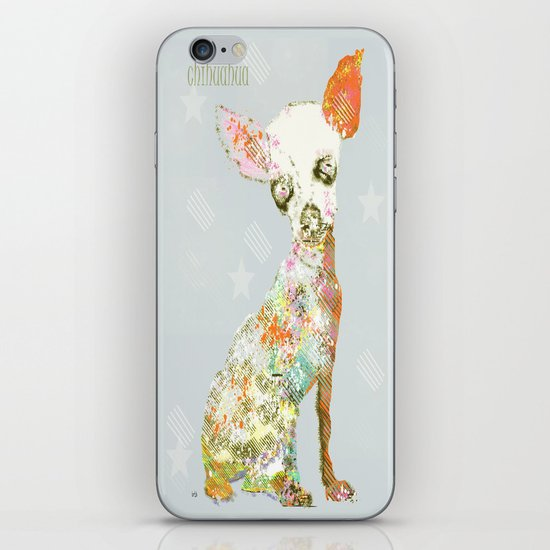 chihuahua dog  iPhone & iPod Skin