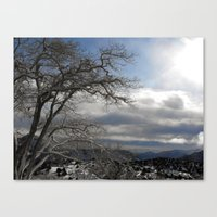 Winter in Spring Canvas Print