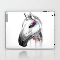Rainbow Horse Laptop & iPad Skin