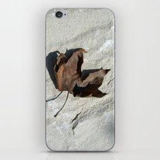 old leaf IV iPhone & iPod Skin